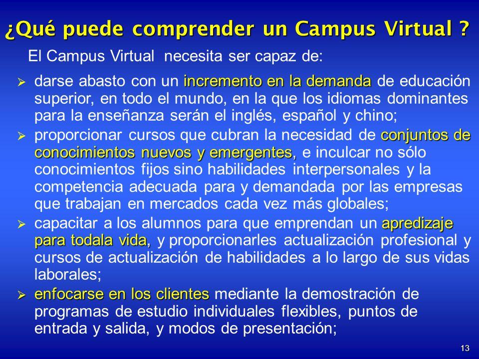 13 ¿Qué puede comprender un Campus Virtual ? El Campus Virtual necesita ser capaz de: incremento en la demanda darse abasto con un incremento en la de