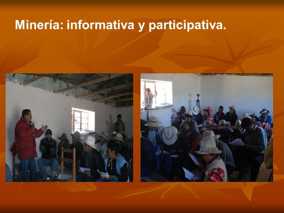 Minería: informativa y participativa.
