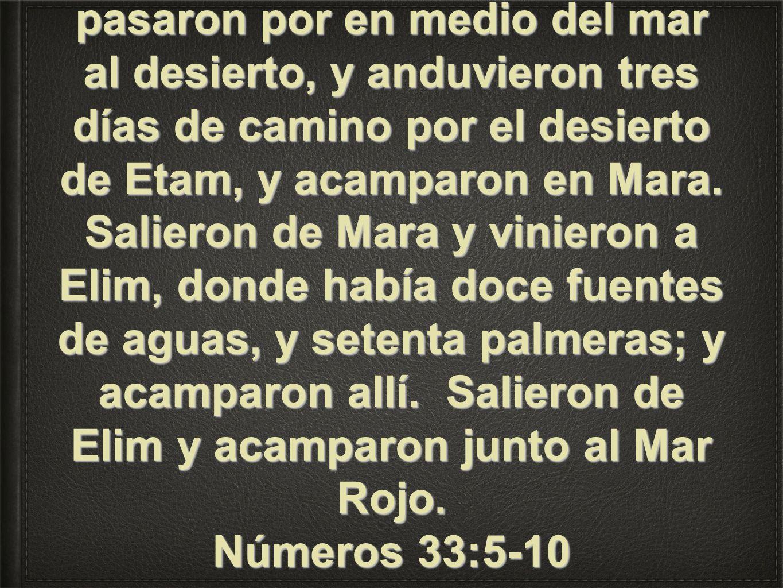 Salieron, pues, los hijos de Israel de Ramesés, y acamparon en Sucot. Salieron de Sucot y acamparon en Etam, que está al confín del desierto. Salieron