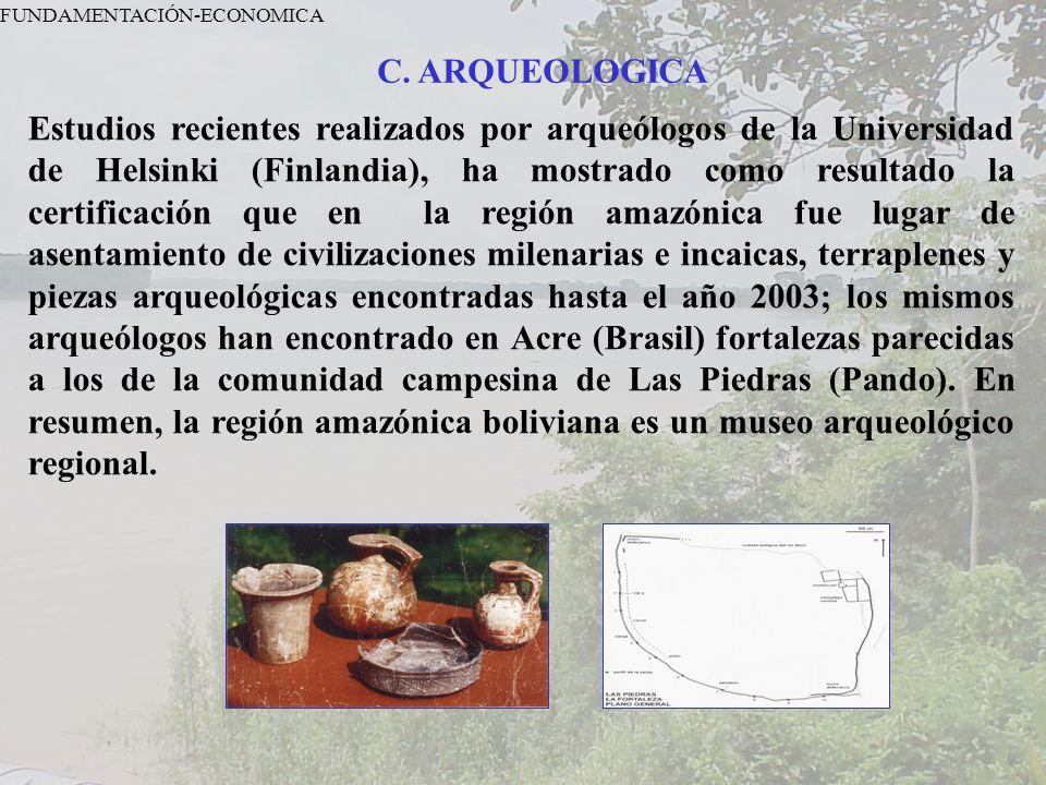 FUNDAMENTACIÓN-ECONOMICA C.