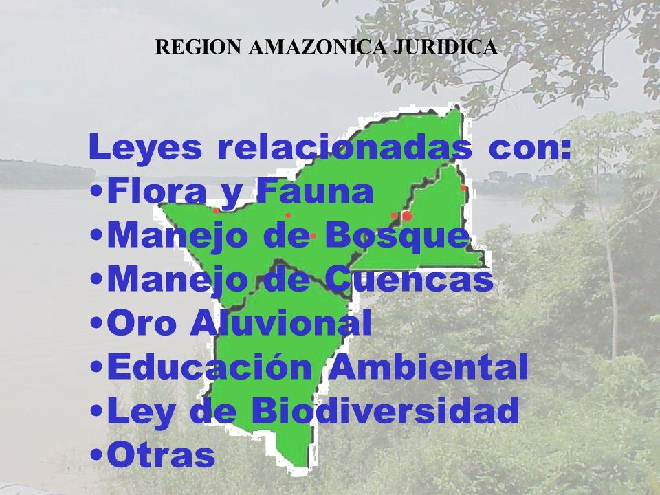 REGION AMAZONICA JURIDICA Leyes relacionadas con: Flora y Fauna Manejo de Bosque Manejo de Cuencas Oro Aluvional Educación Ambiental Ley de Biodiversi