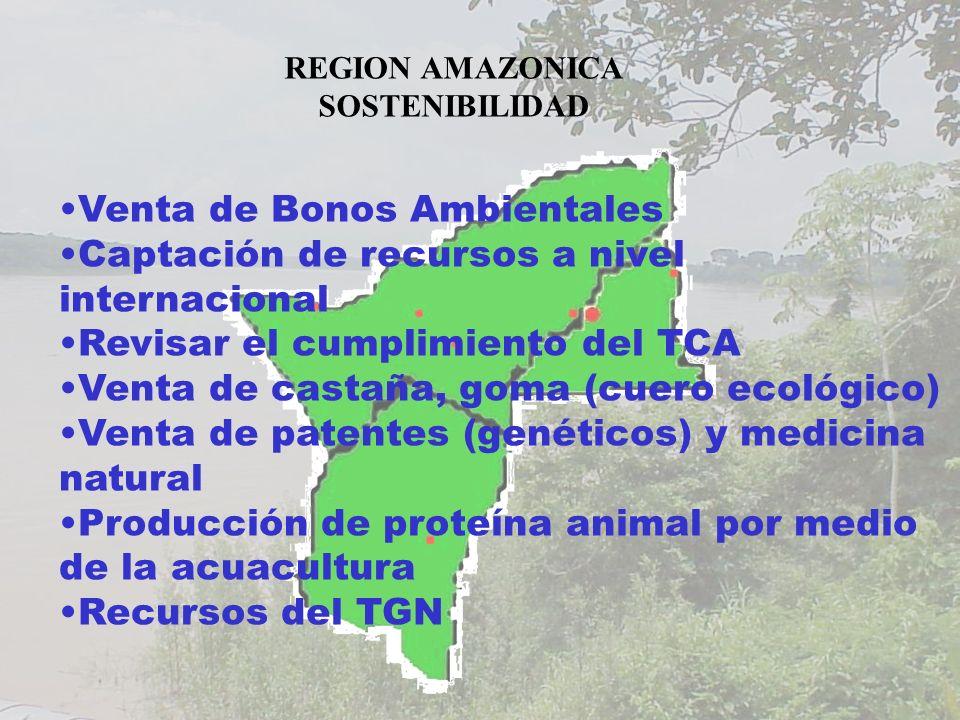 REGION AMAZONICA SOSTENIBILIDAD Venta de Bonos Ambientales Captación de recursos a nivel internacional Revisar el cumplimiento del TCA Venta de castaña, goma (cuero ecológico) Venta de patentes (genéticos) y medicina natural Producción de proteína animal por medio de la acuacultura Recursos del TGN