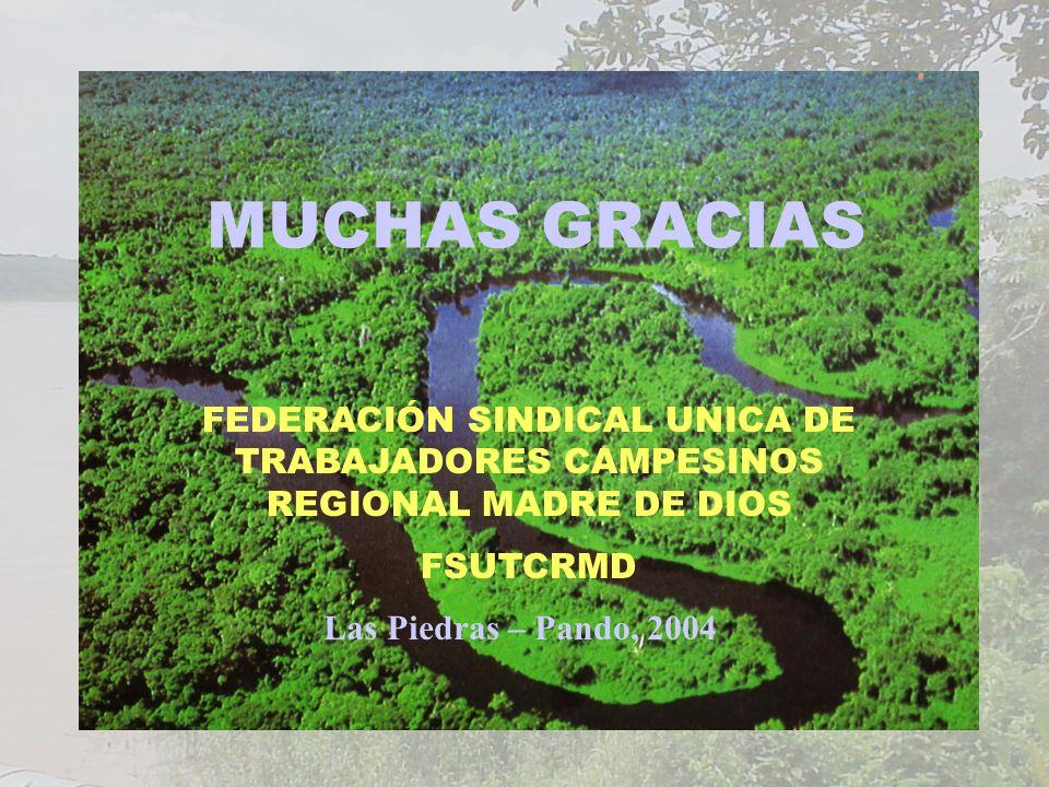Las Piedras – Pando, 2004 FEDERACIÓN SINDICAL UNICA DE TRABAJADORES CAMPESINOS REGIONAL MADRE DE DIOS FSUTCRMD MUCHAS GRACIAS