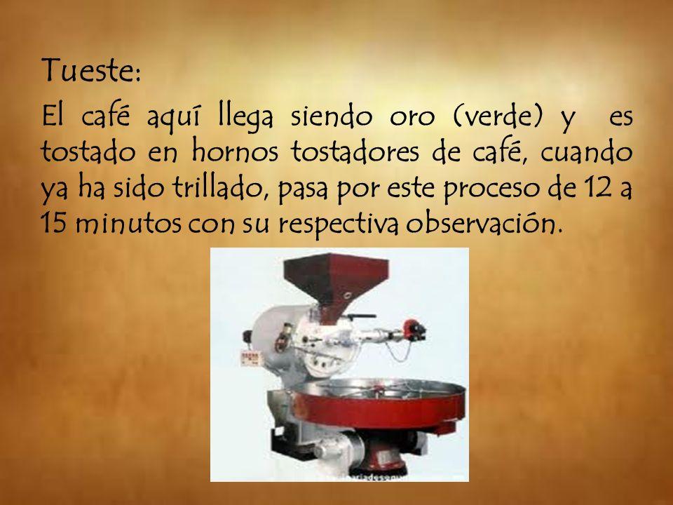 Tueste: El café aquí llega siendo oro (verde) y es tostado en hornos tostadores de café, cuando ya ha sido trillado, pasa por este proceso de 12 a 15