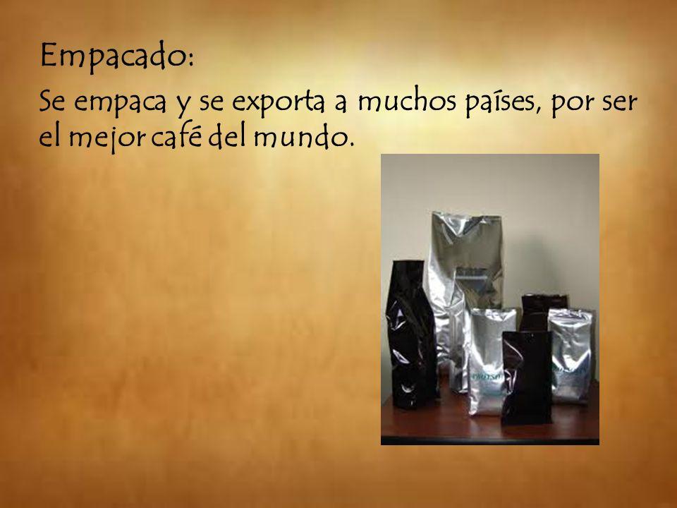 Empacado: Se empaca y se exporta a muchos países, por ser el mejor café del mundo.