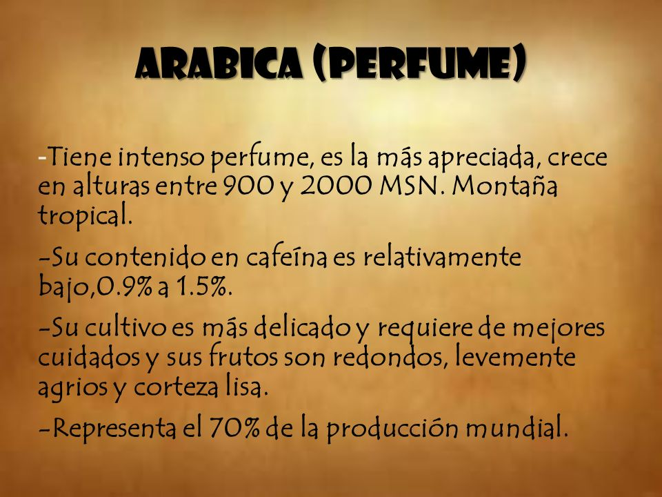 ARABICA (PERFUME) - Tiene intenso perfume, es la más apreciada, crece en alturas entre 900 y 2000 MSN. Montaña tropical. -Su contenido en cafeína es r