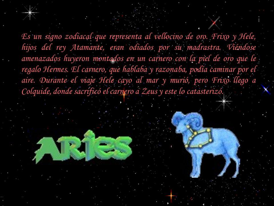 Es un signo zodiacal, también llamado ánfora. Se identifica con Ganímedes. Zeus, cautivado por su belleza, lo rapto para que sirviese el vino a los di