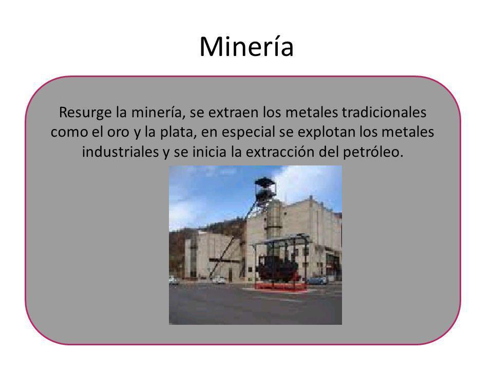 Minería Resurge la minería, se extraen los metales tradicionales como el oro y la plata, en especial se explotan los metales industriales y se inicia