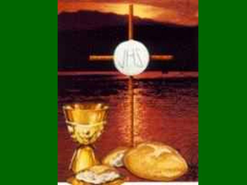 Los poderosos se inquietan ante una Luz que les pueda dar sombra La LUZ de Dios es clara y clarifica