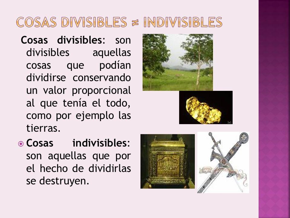 Cosas divisibles: son divisibles aquellas cosas que podían dividirse conservando un valor proporcional al que tenía el todo, como por ejemplo las tier