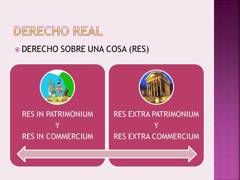 RES MANCIPI Y RES NEC MANCIPI COSAS INMUEBLES Y COSAS MUEBLES COSAS CORPORALES E INCORPORALES COSAS DIVISIBLES E INDIVISIBLES COSAS PRINCIIPALES Y ACCESESORIAS COSAS FUNGIBLES Y NO FUNGIBLES COSAS CONSUMIBLES Y NO CONSUMIBLES RES IN PATRIMONIUM Y RES IN COMMERCIUM POR RAZONES DE DERECHO DIVINO POR RAZONES DE DERECHO HUMANO RES EXTRA PATRIMONIUM Y RES EXTRA COMMERCIUM SACRAE RELIGIOSAE SACTAE COMMUNES PUBLICAE