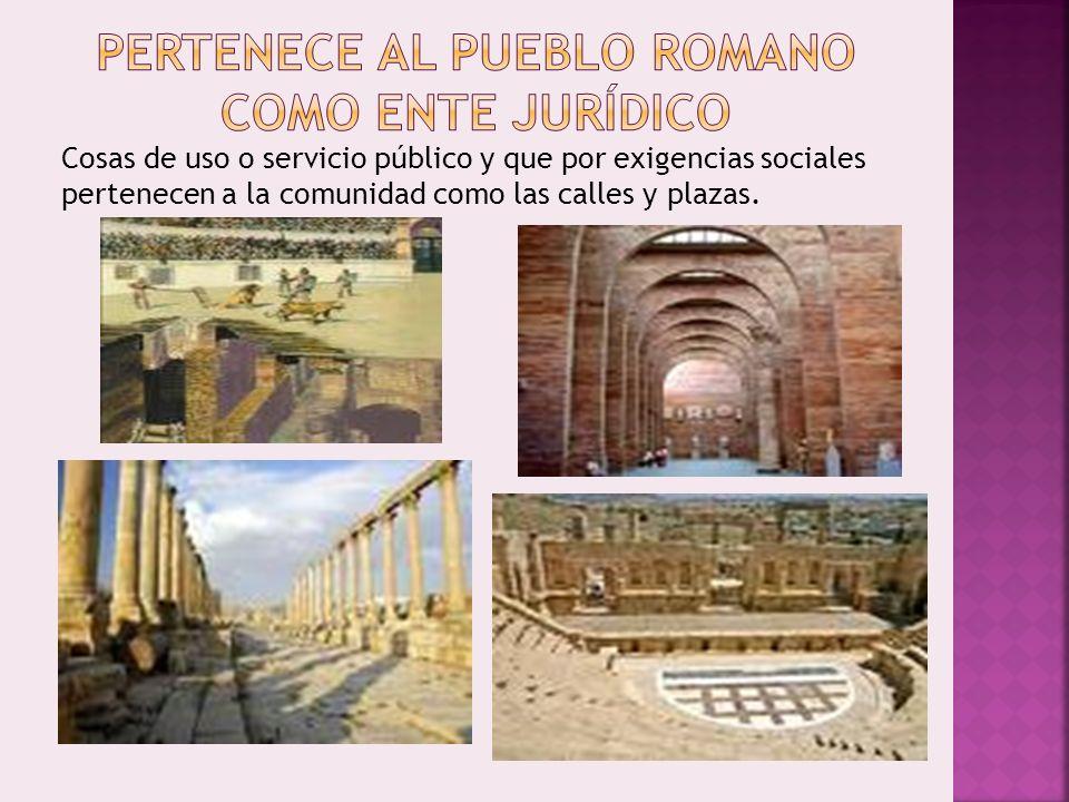 Cosas de uso o servicio público y que por exigencias sociales pertenecen a la comunidad como las calles y plazas.