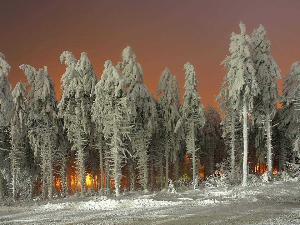 El patrón de vida finlandés es elevado. El sector clave de su economía es la industria - principalmente maderera, metalúrgica, ingeniería, telecomunic