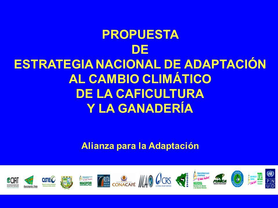 PROPUESTA DE ESTRATEGIA NACIONAL DE ADAPTACIÓN AL CAMBIO CLIMÁTICO DE LA CAFICULTURA Y LA GANADERÍA Alianza para la Adaptación