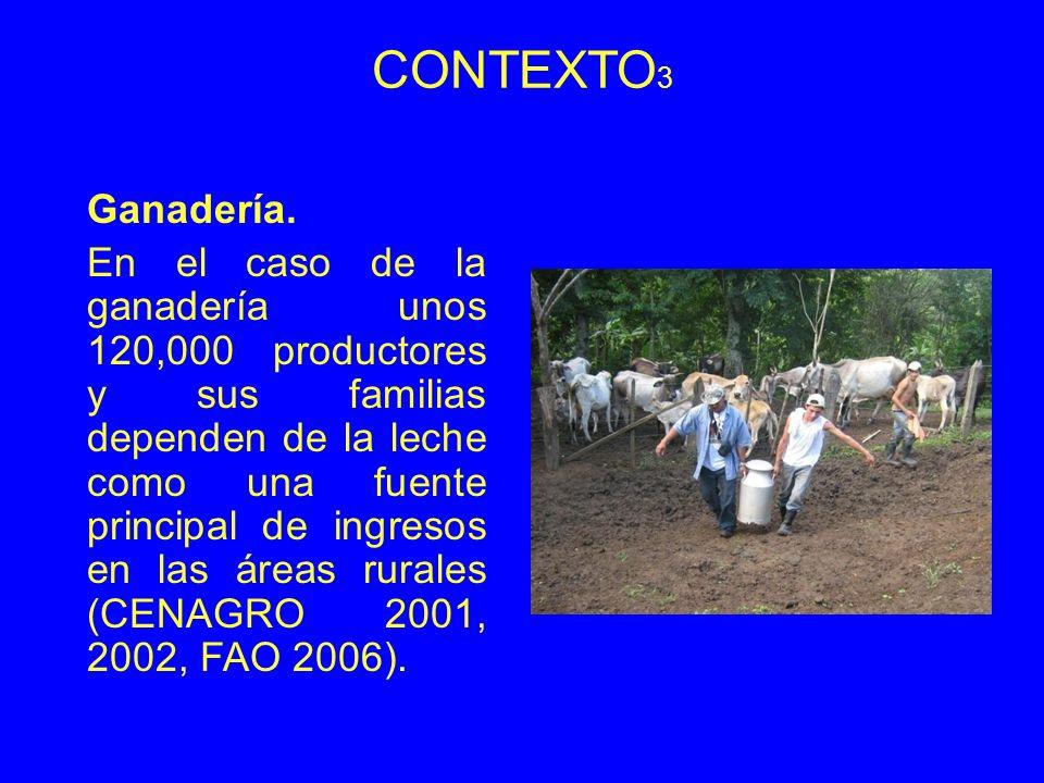 CONTEXTO 3 Ganadería. En el caso de la ganadería unos 120,000 productores y sus familias dependen de la leche como una fuente principal de ingresos en
