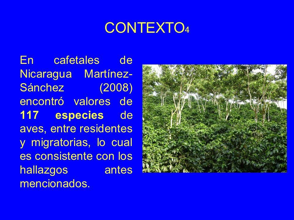CONTEXTO 4 En cafetales de Nicaragua Martínez- Sánchez (2008) encontró valores de 117 especies de aves, entre residentes y migratorias, lo cual es consistente con los hallazgos antes mencionados.
