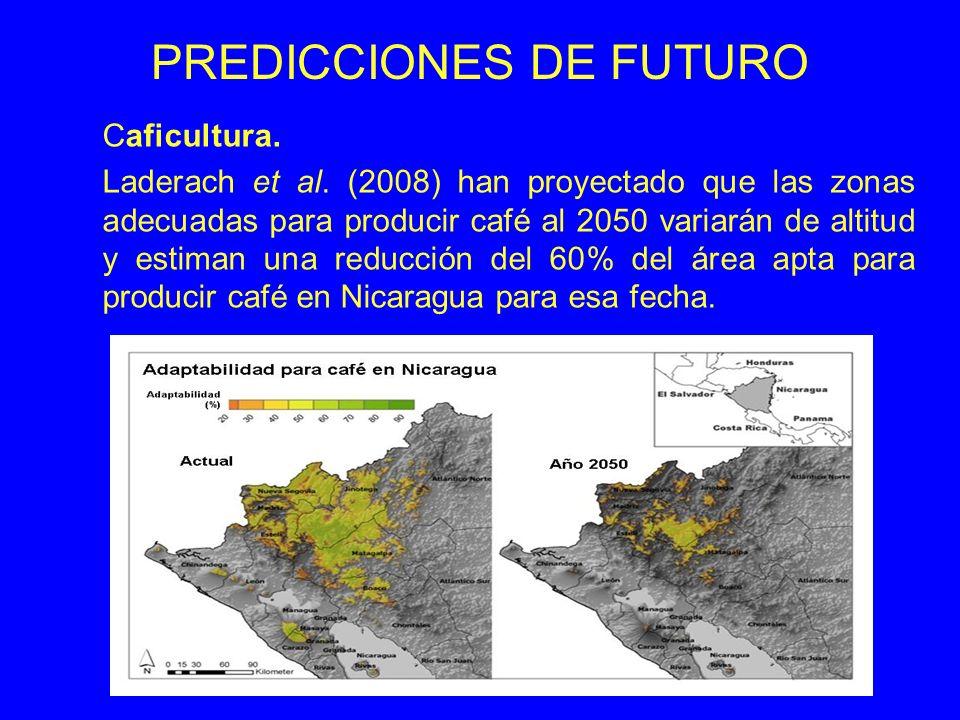 PREDICCIONES DE FUTURO Caficultura. Laderach et al. (2008) han proyectado que las zonas adecuadas para producir café al 2050 variarán de altitud y est