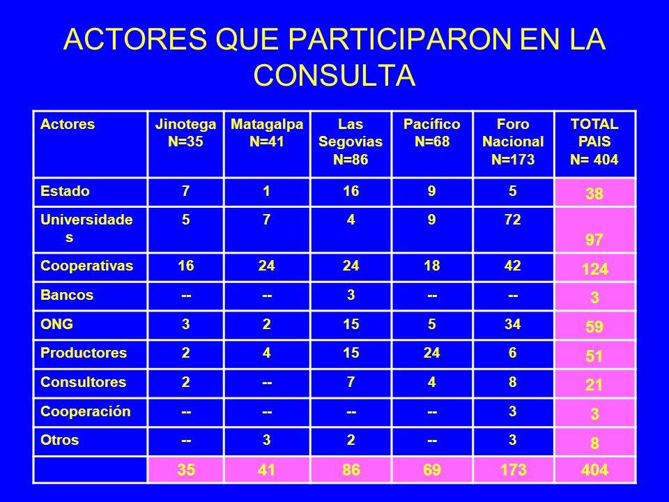 ACTORES QUE PARTICIPARON EN LA CONSULTA ActoresJinotega N=35 Matagalpa N=41 Las Segovias N=86 Pacífico N=68 Foro Nacional N=173 TOTAL PAIS N= 404 Esta