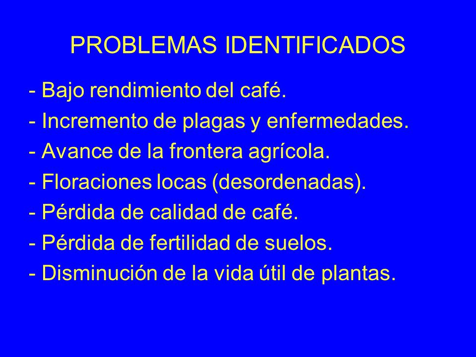 PROBLEMAS IDENTIFICADOS - Bajo rendimiento del café. - Incremento de plagas y enfermedades. - Avance de la frontera agrícola. - Floraciones locas (des