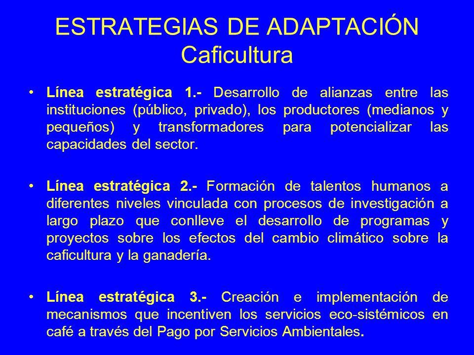 ESTRATEGIAS DE ADAPTACIÓN Caficultura Línea estratégica 1.- Desarrollo de alianzas entre las instituciones (público, privado), los productores (medianos y pequeños) y transformadores para potencializar las capacidades del sector.