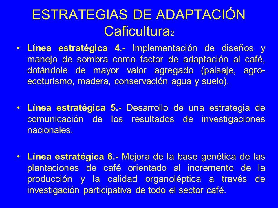 ESTRATEGIAS DE ADAPTACIÓN Caficultura 2 Línea estratégica 4.- Implementación de diseños y manejo de sombra como factor de adaptación al café, dotándol
