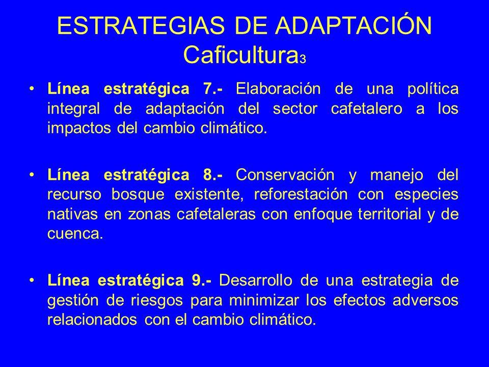 ESTRATEGIAS DE ADAPTACIÓN Caficultura 3 Línea estratégica 7.- Elaboración de una política integral de adaptación del sector cafetalero a los impactos del cambio climático.