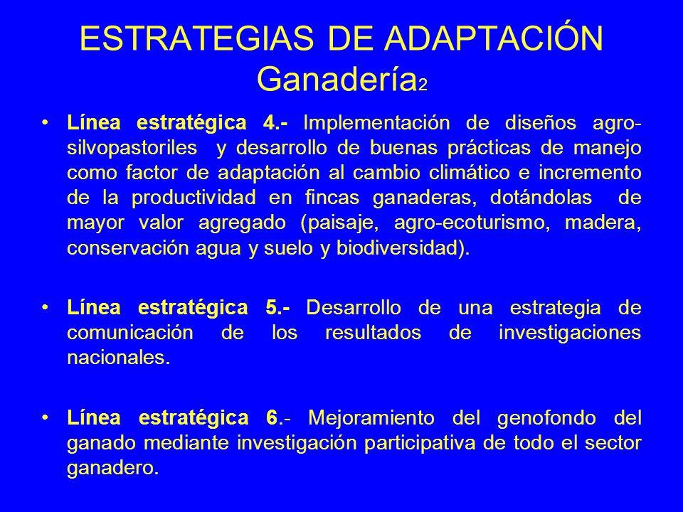 ESTRATEGIAS DE ADAPTACIÓN Ganadería 2 Línea estratégica 4.- Implementación de diseños agro- silvopastoriles y desarrollo de buenas prácticas de manejo