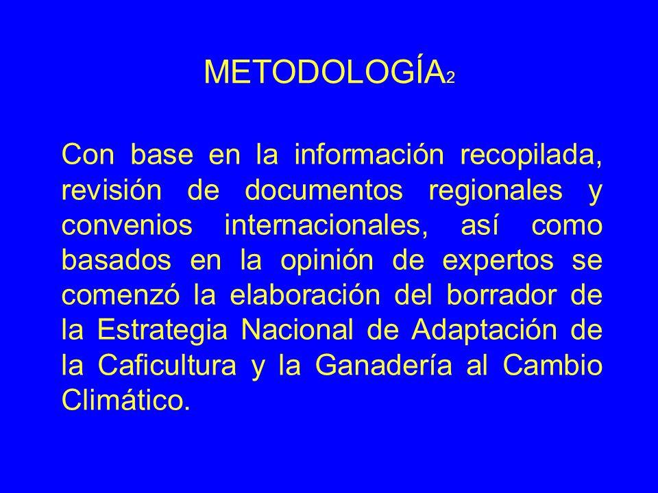 METODOLOGÍA 2 Con base en la información recopilada, revisión de documentos regionales y convenios internacionales, así como basados en la opinión de