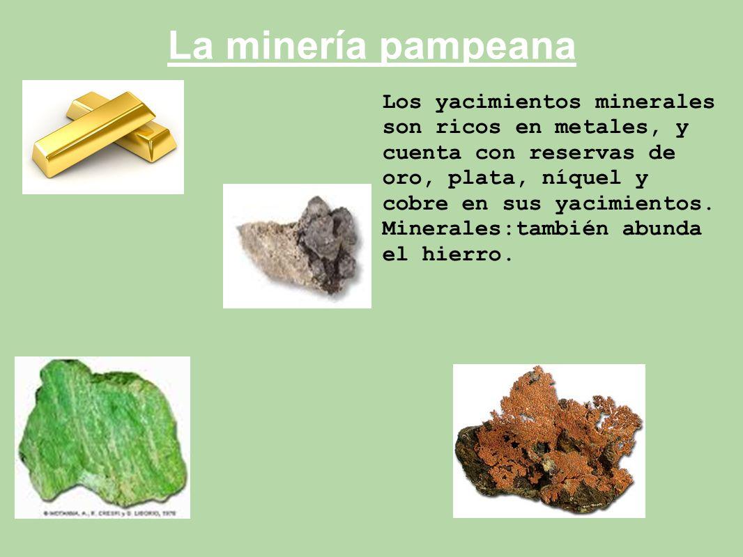 La minería pampeana Los yacimientos minerales son ricos en metales, y cuenta con reservas de oro, plata, níquel y cobre en sus yacimientos.