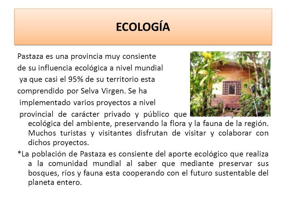 ECOLOGÍA Pastaza es una provincia muy consiente de su influencia ecológica a nivel mundial ya que casi el 95% de su territorio esta comprendido por Selva Virgen.