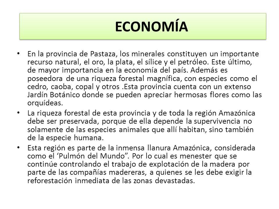 ECONOMÍA En la provincia de Pastaza, los minerales constituyen un importante recurso natural, el oro, la plata, el sílice y el petróleo. Este último,