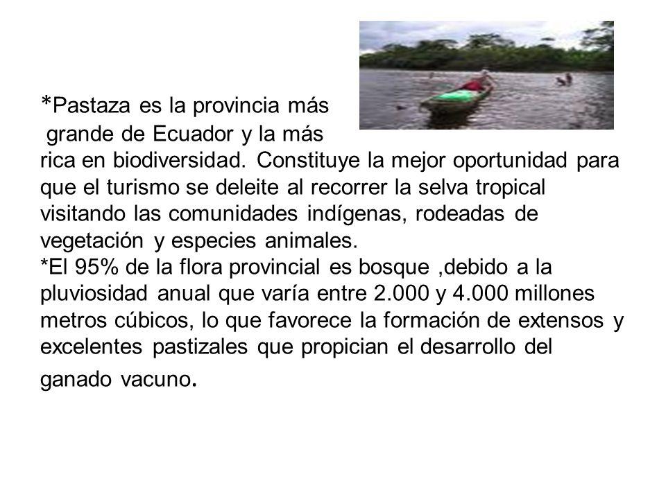 * Pastaza es la provincia más grande de Ecuador y la más rica en biodiversidad. Constituye la mejor oportunidad para que el turismo se deleite al reco