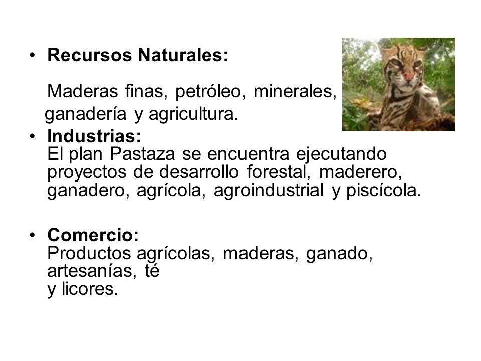 Recursos Naturales: Maderas finas, petróleo, minerales, ganadería y agricultura. Industrias: El plan Pastaza se encuentra ejecutando proyectos de desa