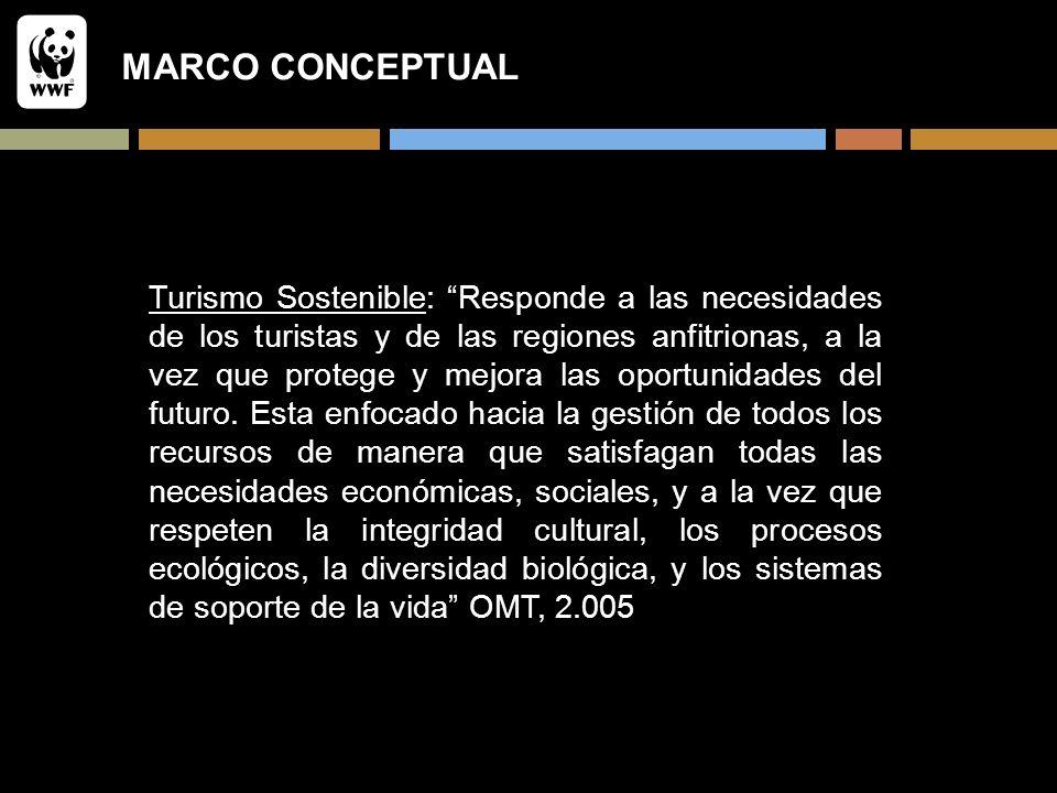 MARCO CONCEPTUAL Turismo Sostenible: Responde a las necesidades de los turistas y de las regiones anfitrionas, a la vez que protege y mejora las oport