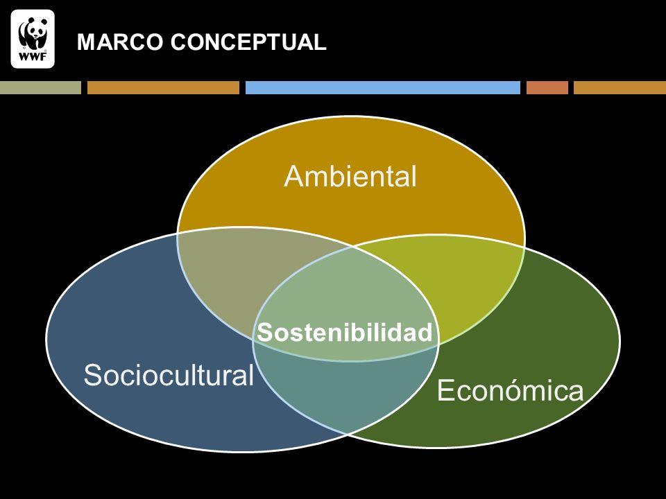 MARCO CONCEPTUAL Ambiental Económica Sociocultural Sostenibilidad