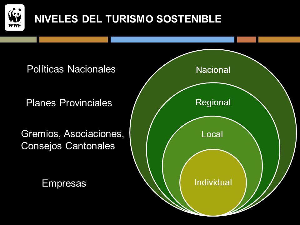 NIVELES DEL TURISMO SOSTENIBLE Nacional Regional Local Individual Empresas Gremios, Asociaciones, Consejos Cantonales Planes Provinciales Políticas Na