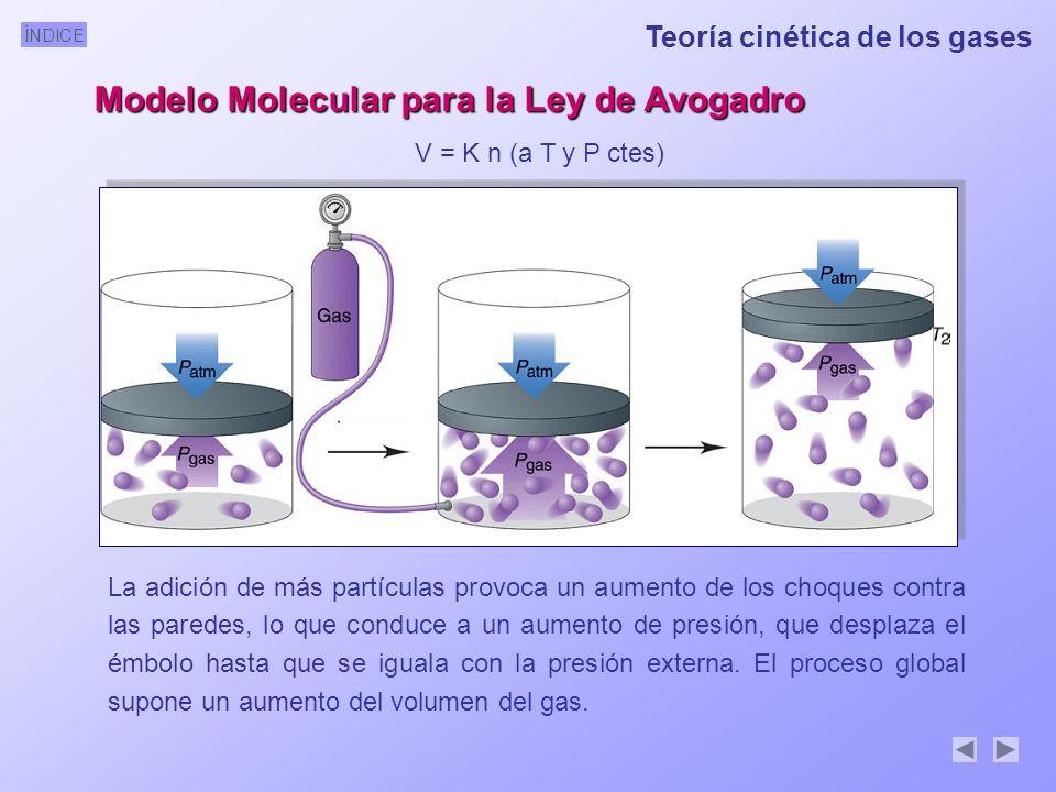 ÍNDICE Modelo Molecular para la Ley de Avogadro V = K n (a T y P ctes) La adición de más partículas provoca un aumento de los choques contra las paredes, lo que conduce a un aumento de presión, que desplaza el émbolo hasta que se iguala con la presión externa.