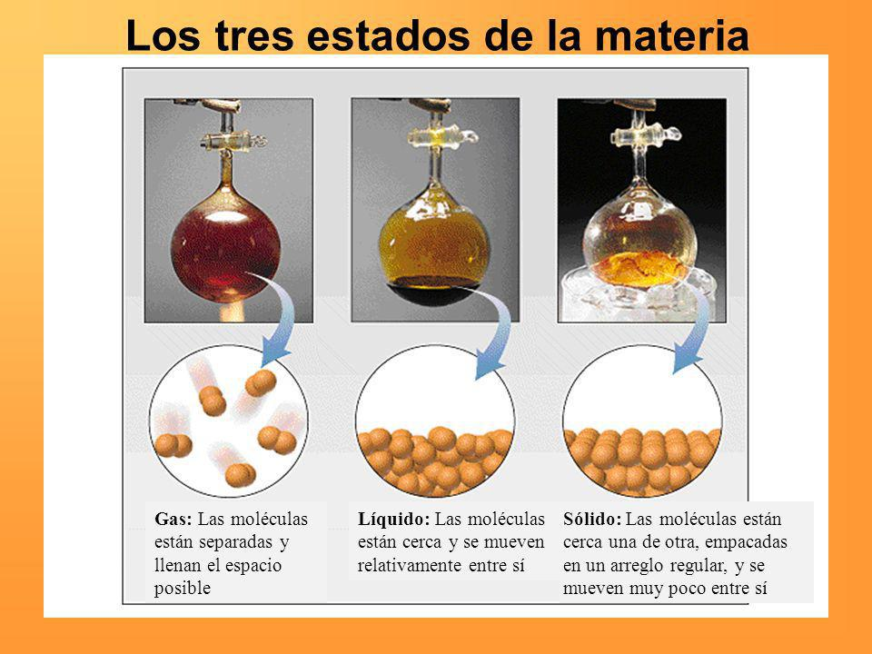 Los tres estados de la materia Gas: Las moléculas están separadas y llenan el espacio posible Líquido: Las moléculas están cerca y se mueven relativam