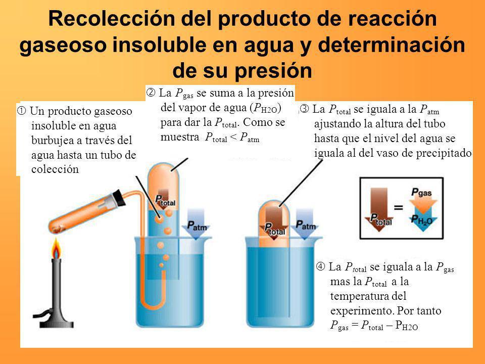 Un producto gaseoso insoluble en agua burbujea a través del agua hasta un tubo de colección La P gas se suma a la presión del vapor de agua (P H2O ) p