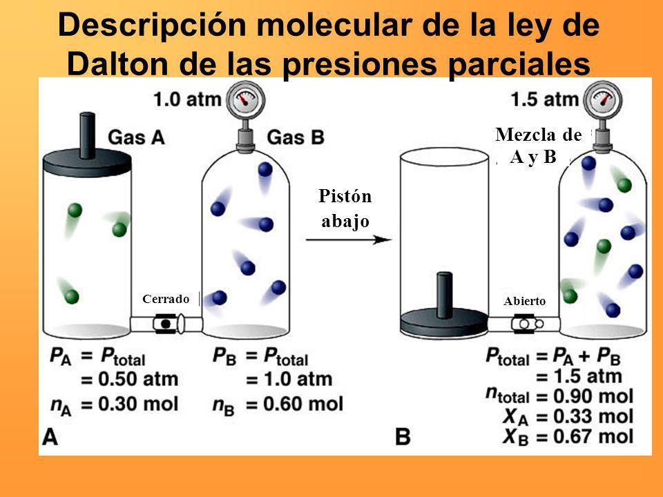 Descripción molecular de la ley de Dalton de las presiones parciales Pistón abajo Cerrado Abierto Mezcla de A y B