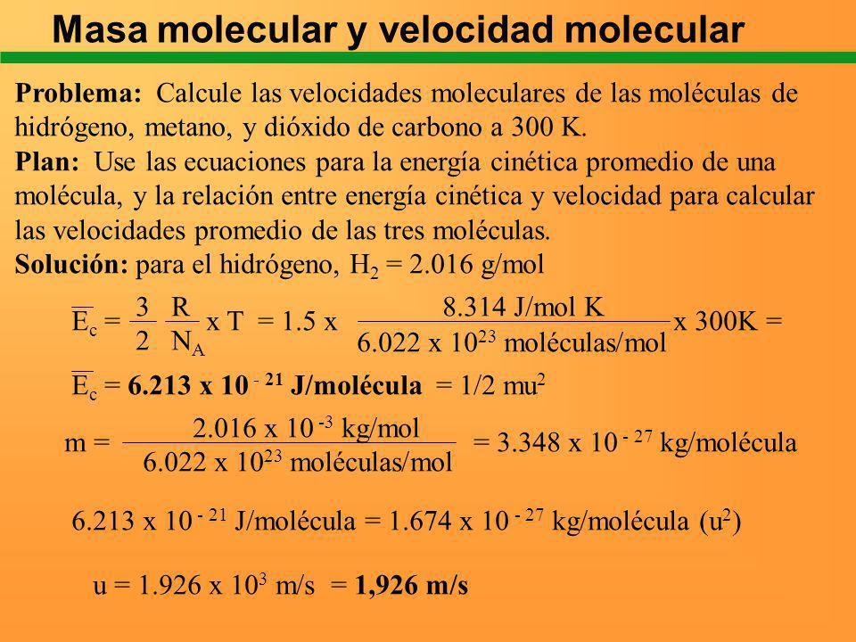 Masa molecular y velocidad molecular Problema: Calcule las velocidades moleculares de las moléculas de hidrógeno, metano, y dióxido de carbono a 300 K