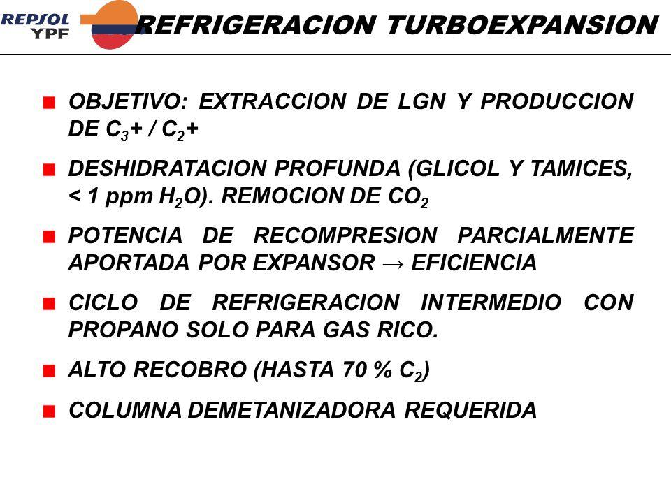 OBJETIVO: EXTRACCION DE LGN Y PRODUCCION DE C 3 + / C 2 + DESHIDRATACION PROFUNDA (GLICOL Y TAMICES, < 1 ppm H 2 O). REMOCION DE CO 2 POTENCIA DE RECO