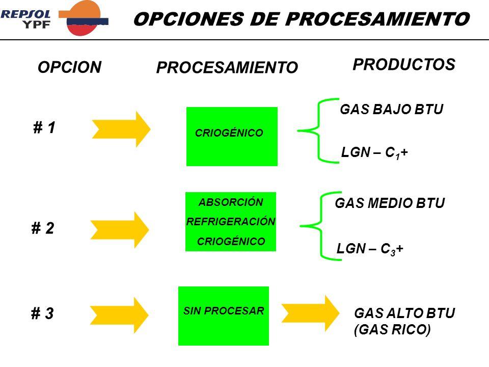 OPCIONES DE PROCESAMIENTO Sistema de procesamientoComponentes removidos Recobro aproximado Separación de líquidos Enfriamiento con agua Enfriamiento con propano Condensado, C 5 +30-70% C 5 +,C 4,C 3 30 Propano70 Absorción Aceite pobre, T ambiente Aceite pobre @ 0 o F Aceite pobre @ -45 o F Propano85 Etano15 Etano60 Turbo expansiónEtano50-90 GNLMetano100