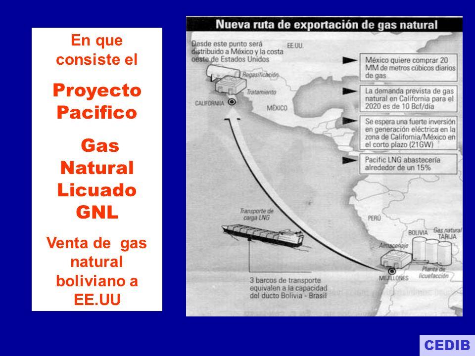 1.Construcción de gasoducto en línea recta entre Tarija y el Puerto de Mejillones en Chile 2.