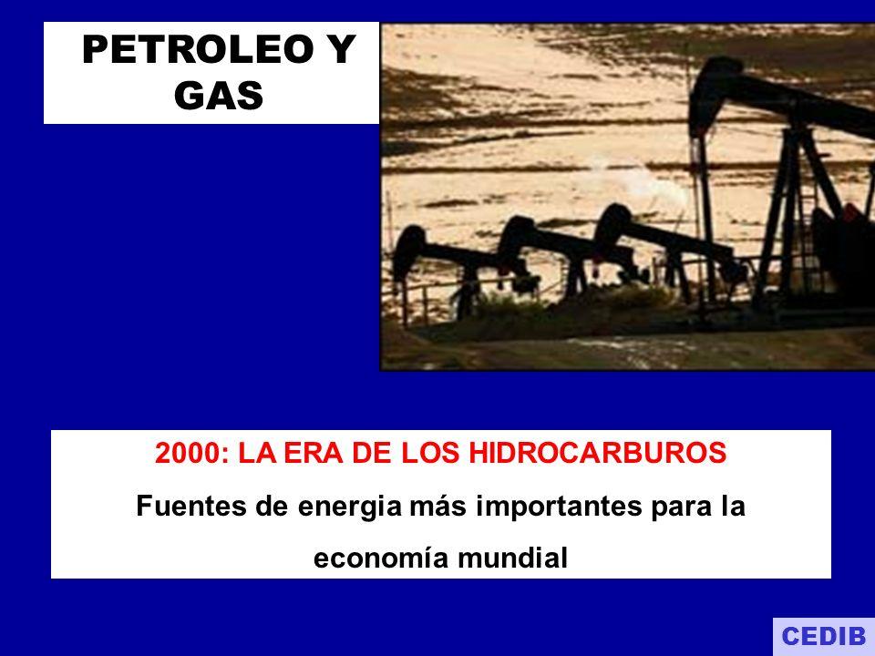 HIDROCARBUROS GAS NATURAL - GN PETROLEO LIVIANO Y PESADO :.