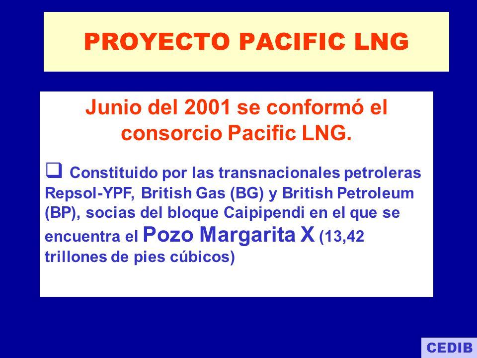 LA PROPUESTA DE PACIFIC LNG Inversión de aproximadamente $ 5.000 a 7.000 millones hasta 2005.