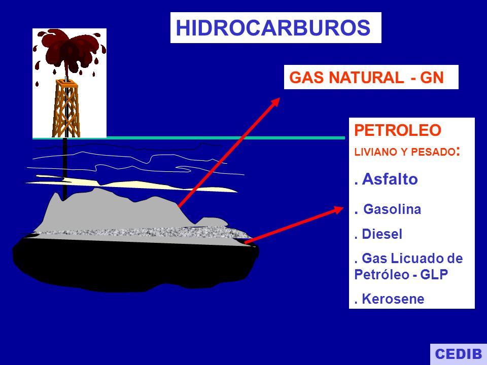 PETROLEO - más contaminante - caro en transporte - maquinaria pesada tiene menor duración GAS - más limpio - más económico - más barato para transporte - base de fertilizante - quemado de combustile es más limpio, no afecta a máquinaria - mayor grado calorífico, - mayor aprovechamiento CEDIB