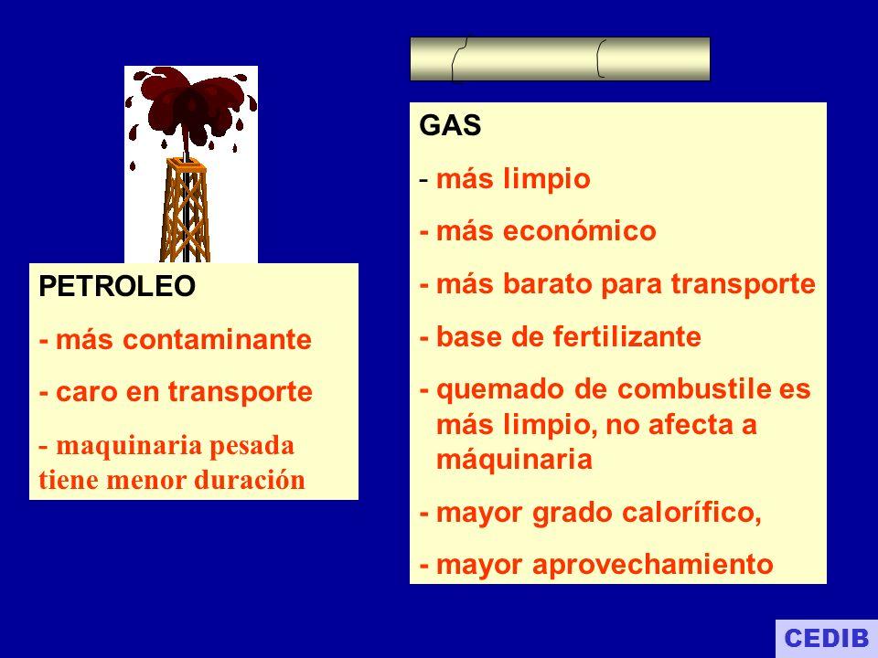 Venezuela 146 TCF Perú 13.32 TCF Chile 4.41 TCF Bolivia 52 TCF Argentina 25.7 TCF Brasil 8.0 TCF RESERVAS DE GAS EN LATINOAMERICANO DATOS PUBLICADOS POR EL MINISTERIO DE DESARROLLO ECONOMICO - enero 2002 CEDIB TCF= Trillones de pies cúbicos de gas