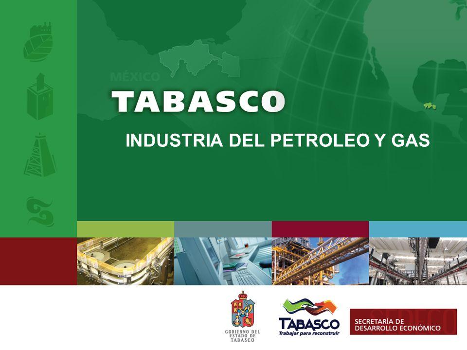 PEMEX EN MÉXICO Petróleos Mexicanos.- Empresa dedicada a desarrollar la cadena productiva de la industria petrolera, desde la exploración, hasta la distribución y comercialización de productos finales.