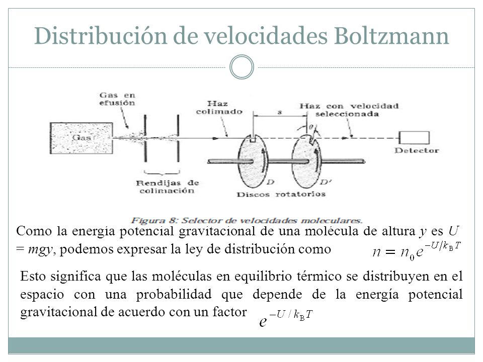 Distribución de velocidades Boltzmann Como la energía potencial gravitacional de una molécula de altura y es U = mgy, podemos expresar la ley de distribución como Esto significa que las moléculas en equilibrio térmico se distribuyen en el espacio con una probabilidad que depende de la energía potencial gravitacional de acuerdo con un factor